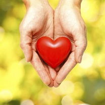 resized_heart_in_hands_2.jpg